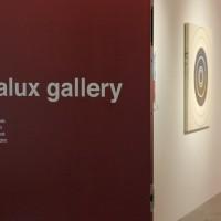 rosalux gallery door van buren building