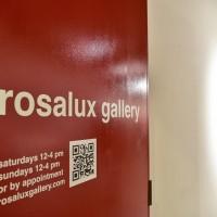 Rosalux Gallery Minnesota Artist Cooperative